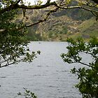 Gougane Barra Lake 3 by Georgia Conroy