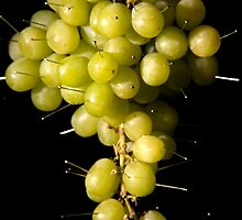 Grapes Colour by GeorgiaConroy