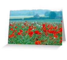 Poppy Field, Norfolk, England Greeting Card
