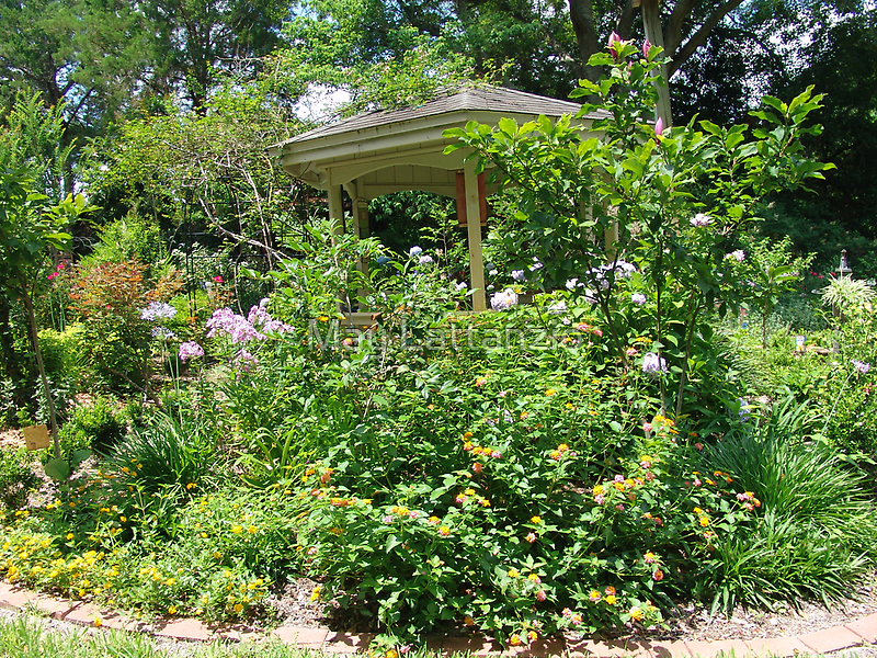 Gazebo at June's Garden, Bayou George, FL by May Lattanzio