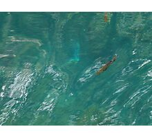 Cool Clear Water Photographic Print
