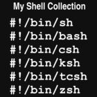 My Shell Collection by dale rogers