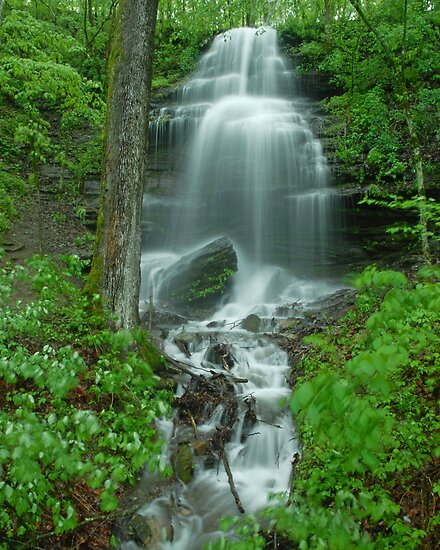 Waterfall south of Nashville, Tennessee by Kevin Price