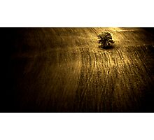 A Ploughed Field Photographic Print