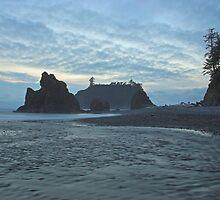 Ruby Beach by Christopher Barton
