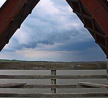 Would You Like a Slice of Sky? by Dawne Olson