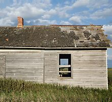 Homestead by Glennis  Siverson