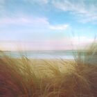 Seagrass by ShaneBooth
