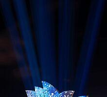 Shine On Opera by Bill Fonseca