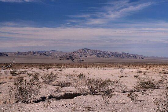 Californian Desert by Jo Nijenhuis