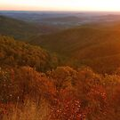 Autumn Sunrise , Shenandoah National Park by Stephen Vecchiotti