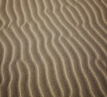 wind sculpted patterns in the sand, Oregon Dunes by Christopher Barton