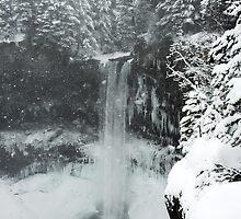 winter, Brandywine Falls , British Columbia by Christopher Barton