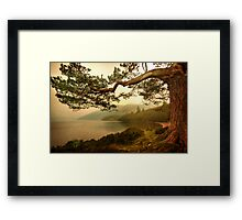 The Branch (Textured) Framed Print