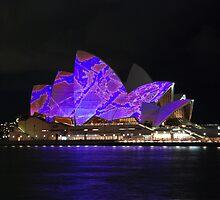 Vivid Sydney  by Kamran Baig