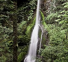 Marymere Falls, Olympic Peninsula , Washington State by Christopher Barton