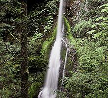 Marymere Falls, Olympic Peninsula , Washington State by Christopher Barton