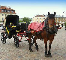 Hackney carriage by Ryszard Spychala
