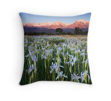 Eastern Sierra Wild Iris Sunrise Throw Pillow