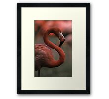 S is for... Framed Print