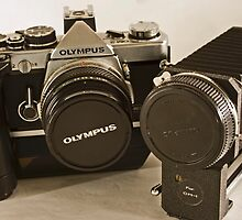 Olympus OM-2 with bellows by Kellea Croft