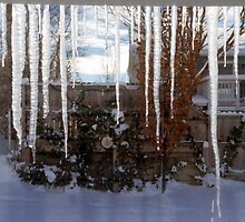 Icicles on Eaves 2 by SteveOhlsen