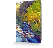 Autumn Stream 4 - Millcreek Canyon, Utah, USA Greeting Card
