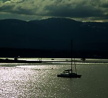 Evening at Comox by Jann Ashworth