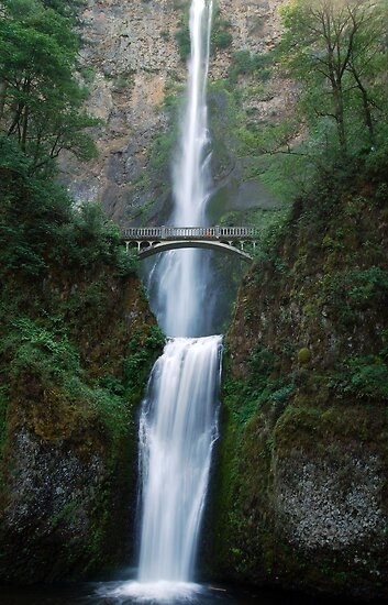 Over Flow - Multnomah Falls Oregon by Barbara Burkhardt
