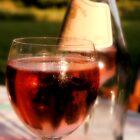 Du Vin by Pamela Jayne Smith