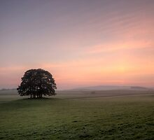 Malham Dawn by SteveMG