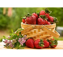 Strawberries Any one? Photographic Print