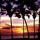 Hawaiian Sunset by Lanis Rossi