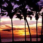Hawaiian Sunset by Lanis Rossi