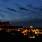 Prague Castle by Gaurav Dhup