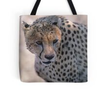 Lunch Over! Tote Bag