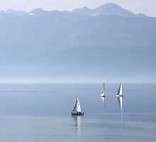 Tranquil sailing by zumi