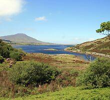 County Mayo landscape 3 by John Quinn