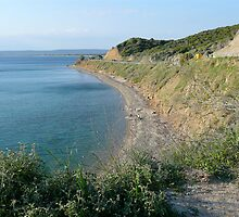 "Anzac Cove (From Charles Bean's ""Spot"") by Ron Marton"
