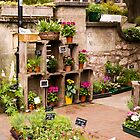 Flower Shop in Sidmouth by SpencerCopping