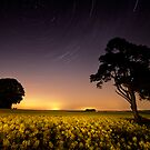 rapeseed field by moonlight by igotmeacanon