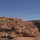 Panorama of lonely tree on rim of Kings Canyon by Klaus Mayer