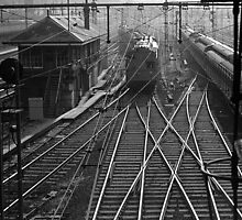Flinders Street Railyard from road bridge 1958 B&W Version by Fred Mitchell