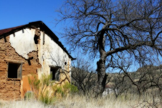 Old Building and Tree by Linda Gregory