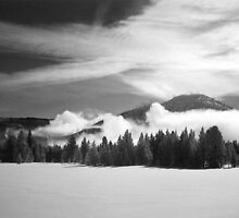 Winter Sky, Yellowstone by Patty Boyte