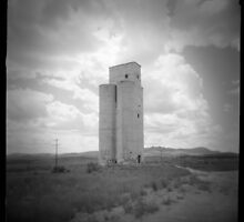 Old Silo by snapshotjunkie