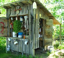 Backyard garden shed by Patty Gross