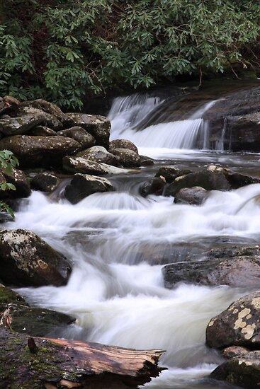 Smoky Mountain Cascades by Sherri Hamilton