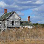 House on the Marsh by Hope Ledebur