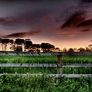 """Rural Sunset"" by Bradley Shawn  Rabon"